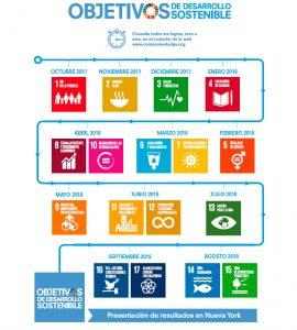 infografia ODS voluntariado empresas